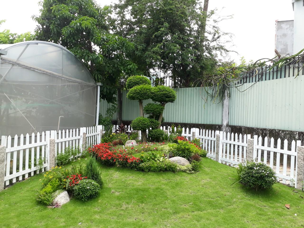 Thiết kế, thi công sân vườn đẹp
