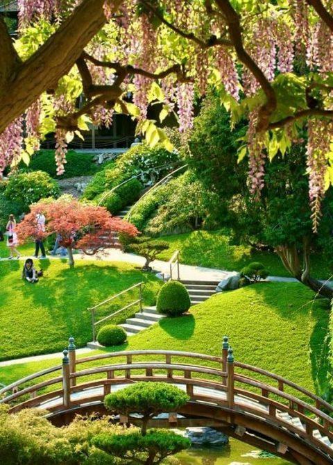 Thiết kế thi công vườn Nhật