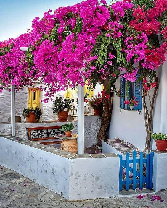 sân vườn phong cách Địa trung hải