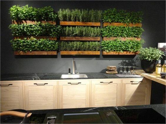 trồng rau sạch trong gia đình - thi công giàn rau sạch nhà phố
