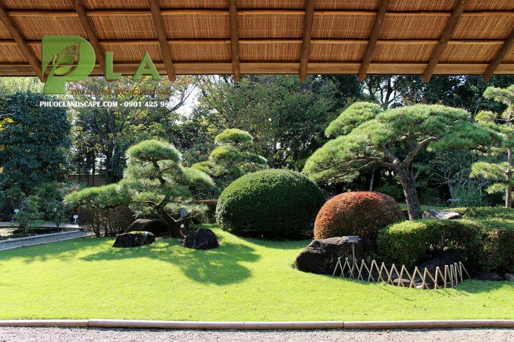 vườn Nhật đẹp