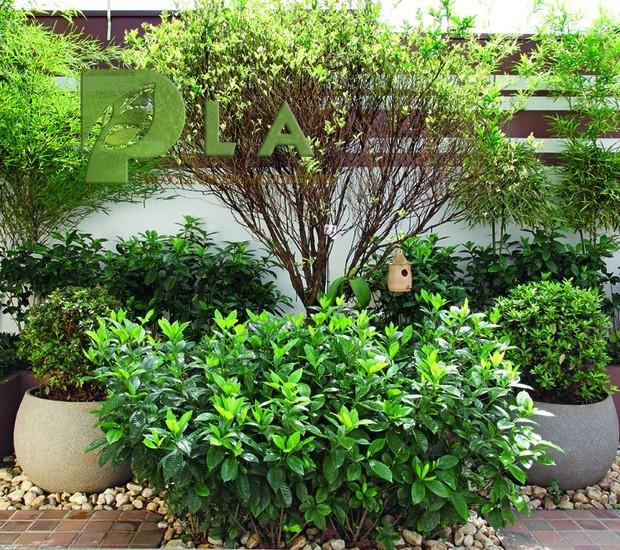bảo dưỡng cảnh quan sân vườn