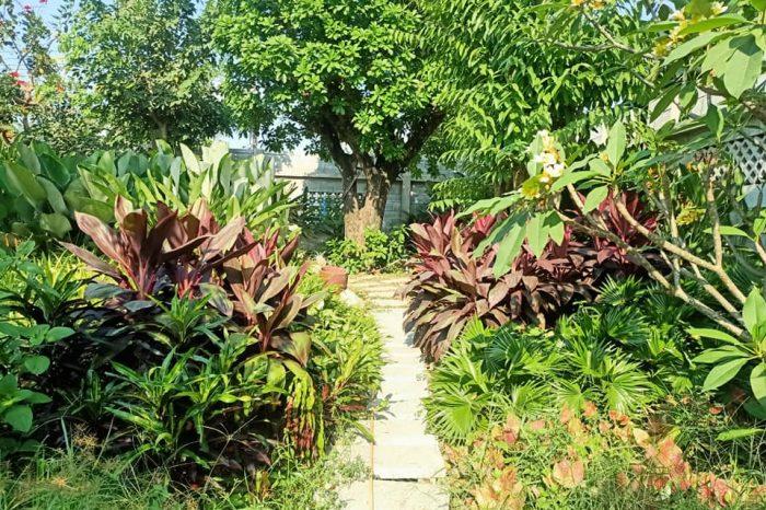 thi công sân vườn biệt thự Bình Dương